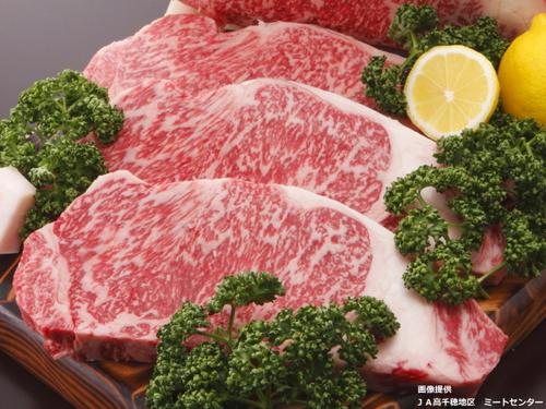 【1日1組限定】神々の里高千穂で育った日本一の和牛〜高千穂牛〜露天風呂付和室スペシャルプラン