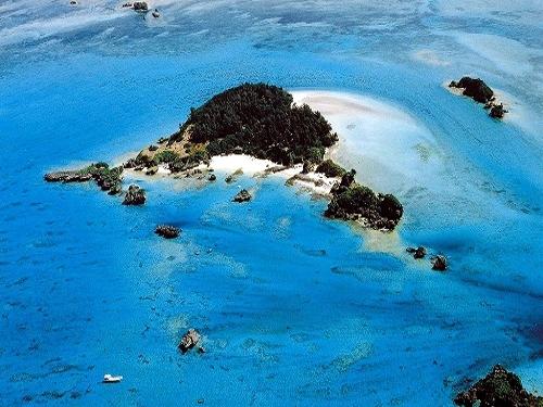 【3連泊以上】ランチ付無人島ヨウ島(Yojima Island)ピクニックツアーショートコース付