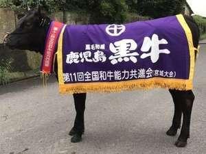 【祝日本一】黒牛和牛食べつくしプラン♪夕食はお部屋食!