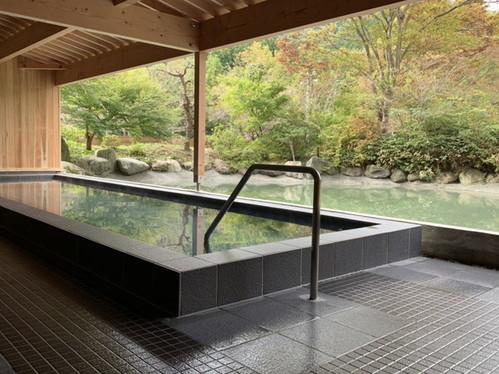 群馬 藤岡 森の温泉ホテル旧:藤岡温泉ホテルリゾートS100255