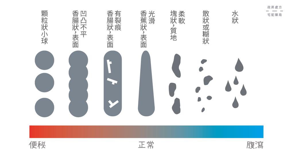從大便的顏色和形狀 看出你的健康狀況!