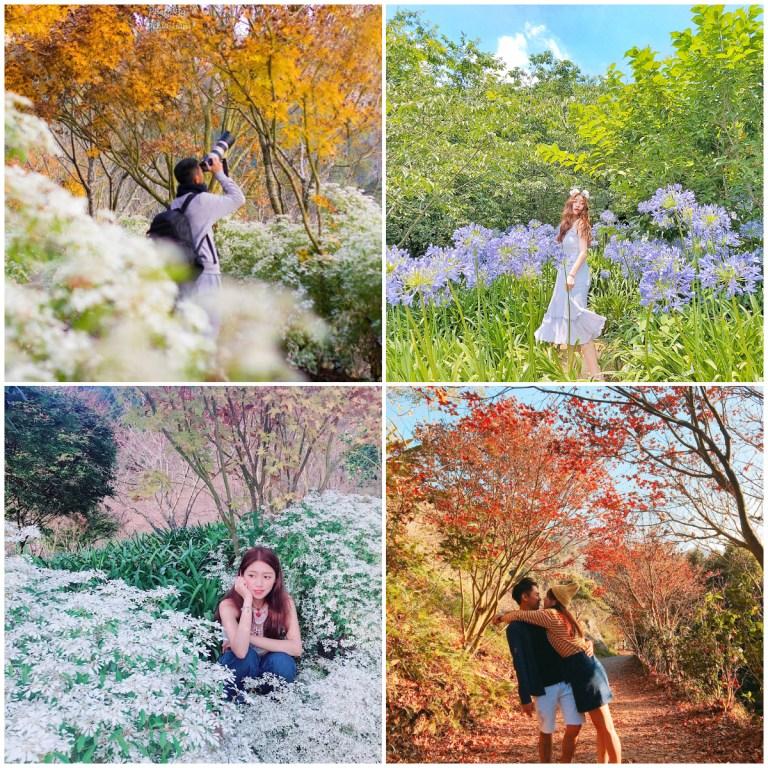 春節連假去哪玩?中部過年走春超美景點一定要去!