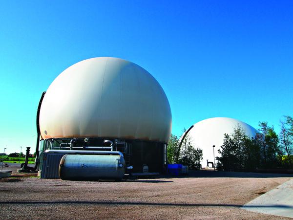 丹麥像這樣的沼氣發電廠就有100多座,將豬糞便成功轉換為電能。
