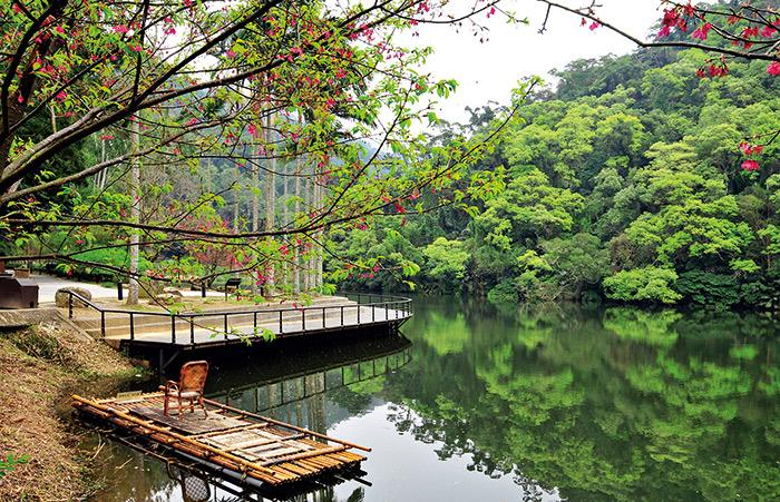 「後慈湖天鵝步道」清靜幽雅, 相當適合漫遊散步。