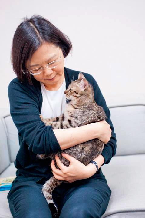 蔡英文愛貓成痴蔡想想