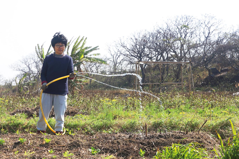 林黛羚租地節省費用用現成的水管澆水