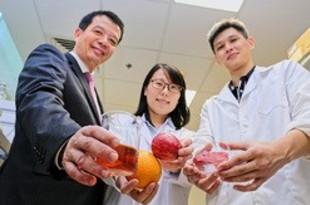 【シンガポール】南洋工科大、天然由来成分の食品保存料開発[食品](2018/08/21)