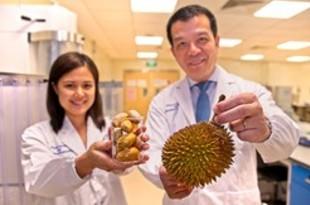 【シンガポール】南洋工科大、ドリアンの種を食用安定剤に活用[食品](2019/01/23)