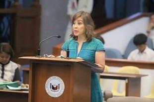 【フィリピン】インドネとのEEZ境界画定へ、上院[政治](2019/05/31)