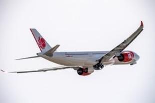 【インドネシア】ライオンエア、エアバス最新鋭機を試験飛行[運輸](2019/07/02)