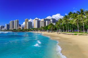 第27回 リーダーズにオススメ、ハワイ・ホノルルの旬な店2019