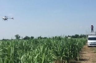 【タイ】ヤマハと三井物産、無人ヘリで農薬散布事業[農水](2020/08/27)