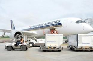【シンガポール】航空貨物業界、ワクチン輸送体制に自信[運輸](2020/12/09)