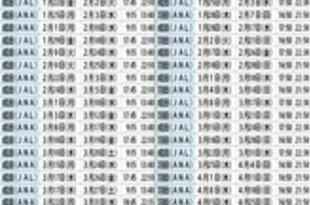 【ベトナム】日系2社のベトナム特別便、3月に増便[運輸](2021/01/15)