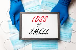 コロナによる嗅覚障害の解明へ新知見