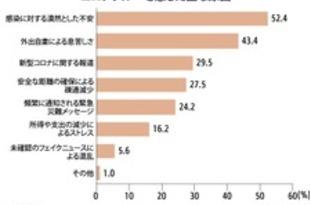【韓国】ソウル市民の51%「コロナブルー」経験[社会](2021/05/06)