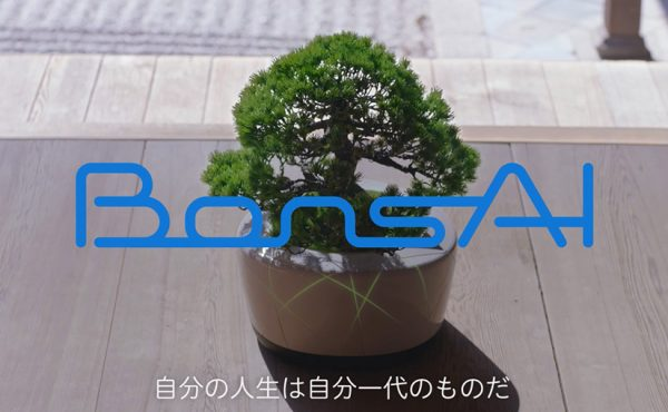 bonsai-top