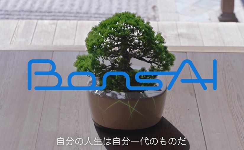 bonsai-top