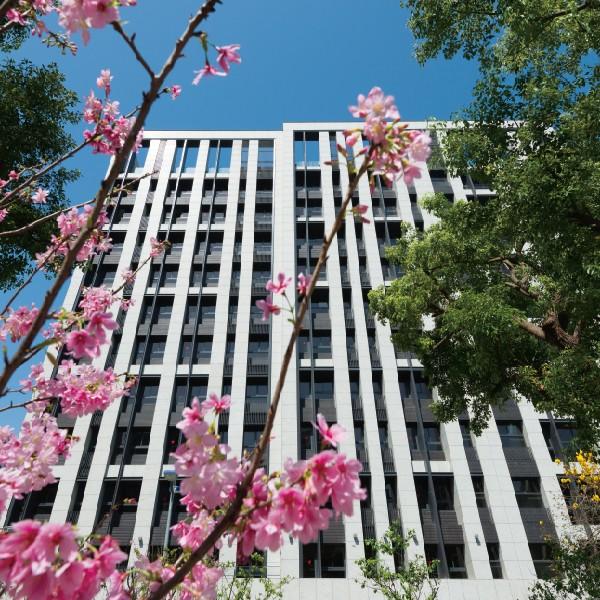 [中山區]松江無籬樓中樓釋出-隱居台北市中心,櫻花樹海景觀
