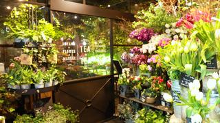 青山の花園でカフェタイム♪「青山フラワーマーケット ティーハウス」とは?