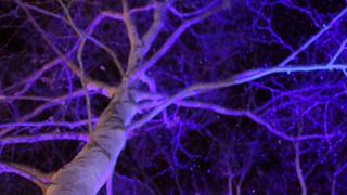 氷のホテルに氷の露天風呂♡「星野リゾート トマム」で冬季限定の幻想体験!
