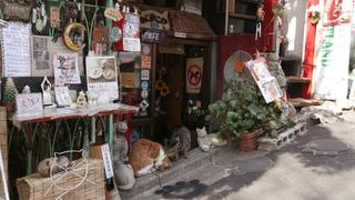 谷中の隠れ家。猫のいる古民家カフェ「ねんねこ家」