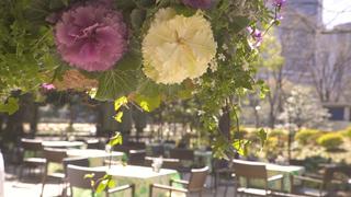 公園の緑に包まれた明治36年創業の老舗レストラン!「日比谷松本楼」で寛ぎのひとときを