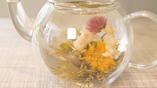 お茶に浮かぶ花を楽しむ! 「クロイソス銀座店」の工芸茶で優雅なティータイムを