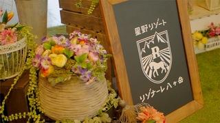 被大自然懷抱的頂級度假勝地!在「星野渡假村 RISONARE 八岳」的商店及咖啡廳盡享奢華時光