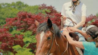 在富士山麓體驗騎馬與河口湖的獨木舟!「虹夕諾雅 富士」周邊活動介紹!
