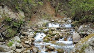 神々が宿る荘厳な奇岩の峰 日本百名山の瑞牆山・本谷川渓谷