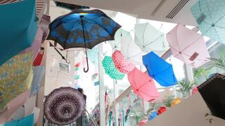 10000本の傘から運命の1本を! 「Waterfront」は国内最大級の傘専門店