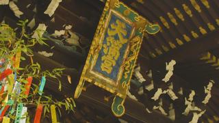 京都が誇る受験の神様!もっと知りたい天神さまの総本社「北野天満宮」の見どころとは?