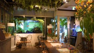 自然を感じられるカフェ&レストランで過ごす、私だけの癒しの時間