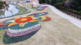 関西最大級のチューリップ畑「淡路島国営明石海峡公園」で春の訪れを感じて