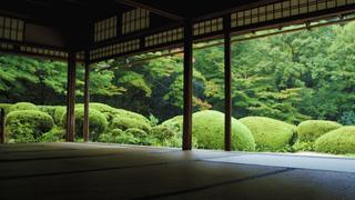 JR東海のCMでお馴染み! 美しい庭園が織り成す和の空間・京都「詩仙堂」