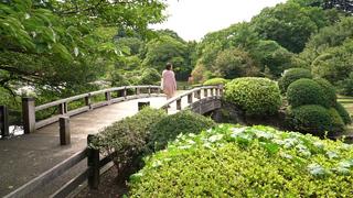 季節の移ろいを楽しむ都会のオアシス「新宿御苑」で夏の面影さがし