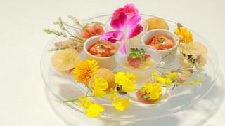 可品嘗整條鰹魚的義式料理。盡享高知在地美味的美食度假村「星野集團 UTOCO 」