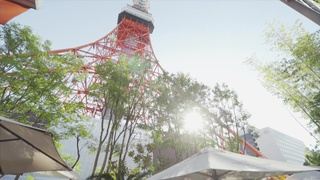 〇〇に東京タワーが現れる!「Terrace Dining TANGO」幸せが訪れる特等席