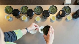 お茶の産地・静岡「星野リゾート 界 遠州」でお茶のブレンド体験
