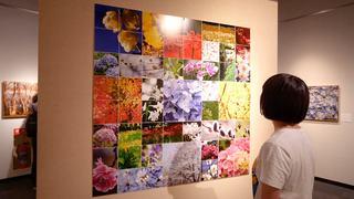 府中の自然を全身で味わう企画展 「田村智久写真展 花の森八景 萌えさかる花たちを謳う」