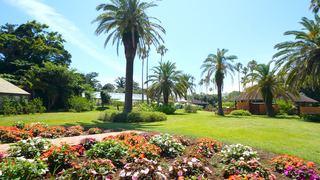 まさに南国の植物園!初島「アジアンガーデンR-Asia」で非日常を満喫