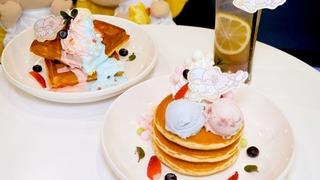 日本一の星空!阿智村「ACHI BASE」カフェ&BARの楽しみ方