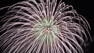 花火×音楽×自然のコラボが圧巻!「第70回青梅市納涼花火大会」