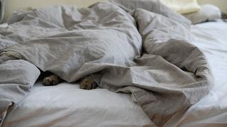 寝苦しい暑さの続く夜に。かしこい寝具の選び方