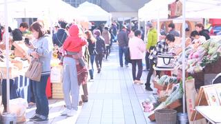 生産者と消費者をつなげるマーケット「グリーンマーケット墨田」で食べ歩き