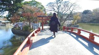 なにをお願いする?800年の歴史を誇るパワースポット「鶴岡八幡宮」で運試し