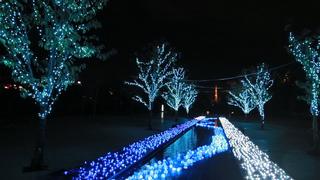 東京タワーをバックに煌めくイルミネーション、聖なる夜に「願いの鐘」を響かせて