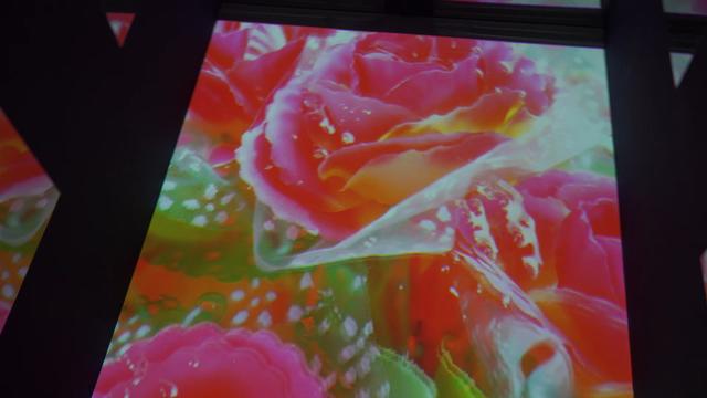 すみだ水族館×蜷川実花 コラボレーションクラゲ展示