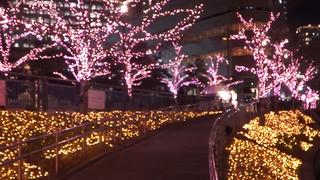 みんなで咲かせる満開の桜! 目黒川に咲く日本一エコなイルミネーション